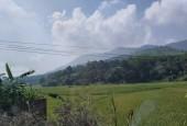 Bán 9000m2 view sinh thái tuyệt đẹp tại Đông Xuân, Quốc Oai, Hà Nội