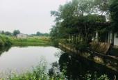 Bán đất nhà vườn Ba Vì Hà Nội diện tích: 5200m2. Đất đẹp, giá rẻ có cả nhà, cả vườn cây ao cá thơ mộng.