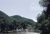 Bán đất Thạch Thất Hà Nội, 2500m2 làm nghỉ dưỡng view hồ đẹp thơ mộng.