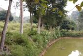 Bán đất sinh thái Kỳ Sơn Hòa Bình, 1.4ha có ao rộng