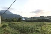 Bán đất làm trang trại, nghỉ dưỡng khu vực Ba Vì view cánh đồng thơ mộng dt: 5100m2 giá 2,6 tỷ