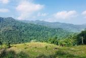 Cần bán 7000m2 đất đối diện Sakana ressot, KDL Hồ Dụ cách mặt đường ql6 30m