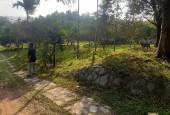 Bán đất Lương Sơn Hòa Bình, khuôn viên 3600m2 đẹp hoàn thiện giá rẻ