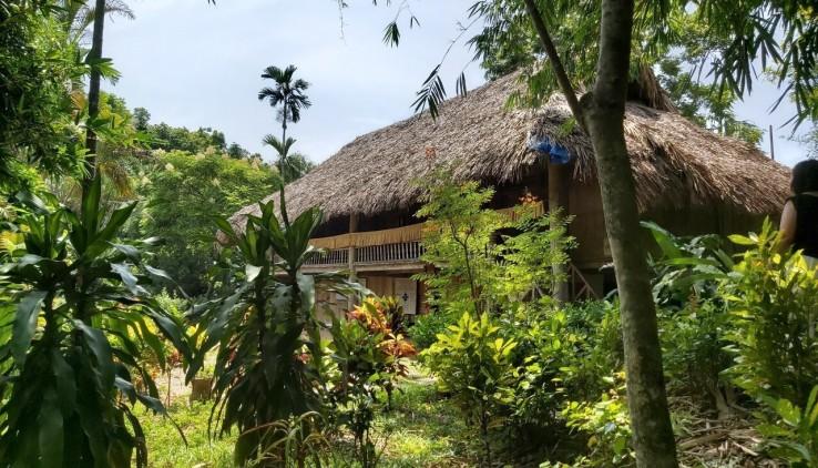 Bán đất Lương Sơn Hòa Bình làm trang trại nhà vườn, đầu tư sinh lời cao