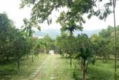 Tôi bán 3600M2 khuôn viên nhà vườn đất thổ cư tại Lương Sơn giá rẻ chỉ hơn 2TỶ LH:0987757698
