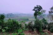 Cần bán 3400m2 đất thổ cư view đẹp nhìn ra cánh đồng tại Yên Bài Ba Vì Hà Nội