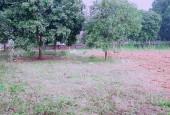Bán đất làm trang trại, nghỉ dưỡng giá rẻ tại Lương Sơn dt: 5800m2 giá chỉ 3,3 tỷ cách Hà Nội 35km