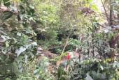 Cần bán khuôn viên nhà vườn tại Lương Sơn Hòa Bình 1500m2