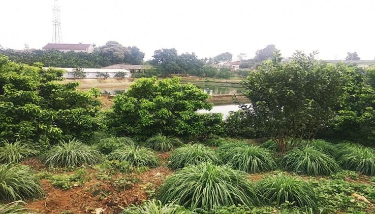 Bán đất Lương Sơn Hòa Bình diện tích 1500m2 thế đất thoải view mặt hồ tiện giao thông giá 1,25 tỷ