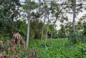 Đất Lương Sơn 2 mặt tiền chỉ hơn triệu/m2