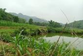 Cần bán nhanh lô đất dt 2439m2 tại Tiến Xuân Thạch Thất Hà Nội