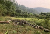 Chính chủ cần bán lô đất DT 900m2 tại Tến Xuân Thạch Thất Hà Nội