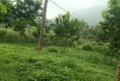 Chính chủ cần bán lô đất DT 2200m trong đó có 400m đất ở tại Phú Mãn Quốc Oai Hà Nội