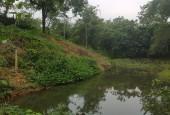 Bán đất xã Tiến xuân Thạch thất Hà nội diện tích rộng 12520m2
