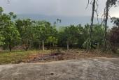 Bán đất xã Yên bình Thạch thất Hà nội diện tích rộng 3946m2