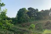 Bán đất tại lương sơn hoa bình đt 5500m đất ở 400m wiu cánh đồng