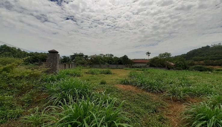 Đất thổ cư Yên Bài Ba Vì view hồ thoáng mát