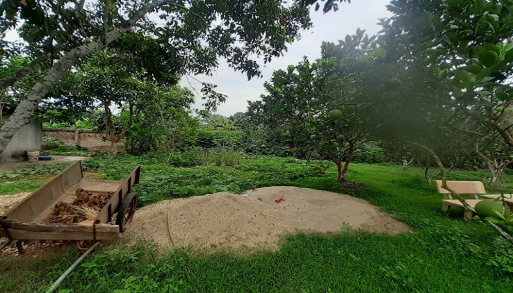 Cần bán khuôn viên nhà vườn 2283m2 siêu đẹp Kim Sơn