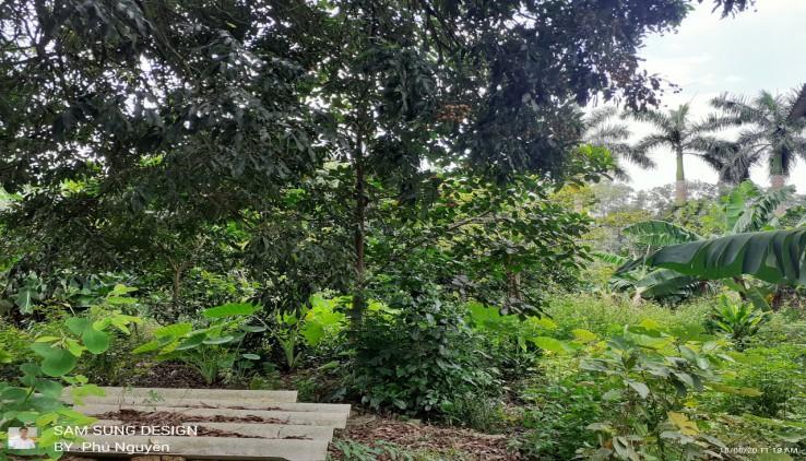 5700m2 đất Lương Sơn làm nhà vườn nghỉ dưỡng