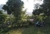 Bán 1700m2 đất thổ cư nhà vườn tại Lương Sơn Hòa Bình giá rẻ