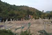 Cần bán gấp 4,2ha đất rừng sản xuất tại Lương Sơn, Hòa Bình