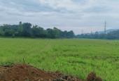Chính chú bán gấp 4300m2 đất tại xã Hòa Sơn – Lương Sơn. Giá thương lượng!