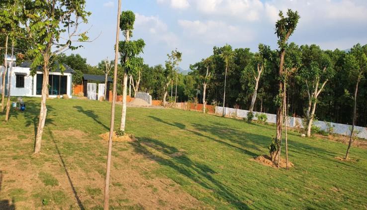 Bán khuôn viên nhà vườn Lương Sơn Hòa Bình diện tích 4024m2, nơi lý tưởng cho kỳ nghỉ dưỡng cuối tuần