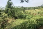 Cần bán gấp 2800m2  có 4000m2 đất thổ cư tại Hòa Sơn, Lương Sơn, Hòa Bình