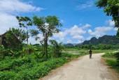 Bán gấp 1500m2 có 400m đất ở còn lại là đất trồng cây lâu năm