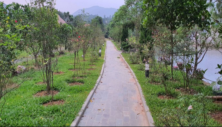 Bán nhanh 22000m2 khuôn viên hoàn thiện tại Lương Sơn