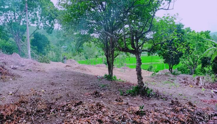 Cần bán 7760m đất thổ cư đối diện Trang Viên Đồng Gội tại Hoà Sơn_ Lương Sơn