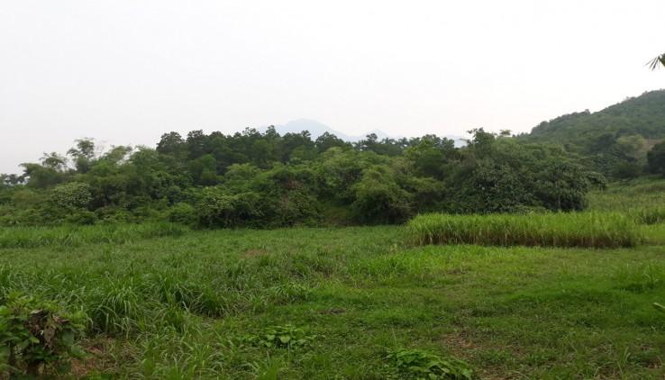 Cần bán nhanh 4000m2 đất thổ cư view cánh đồng tại Vân Hoà_ Ba Vì giá chỉ 900ng/m2