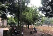 Chuyển nhượng 5800m2 đất 800m2 đất ở, đất phẳng, đường ô tô tránh, vườn cây ăn quả quanh năm nghỉ dưỡng đỉnh – Lương Sơn, HB