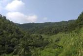 Cần bán 102 ha Đất sinh thái! Tam Đảo thứ 2 trong lòng du khách! Thuộc Lương Sơn Hòa Bình. Diện tích trong sổ 102ha. Thực tế 140 ha.