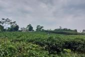 chính chủ cần bán nhanh lô đất DT 2186m có 200m đất ở tai thôn muỗi yên bài ba ì hà nội