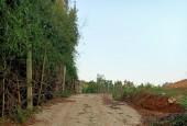 chính chủ cần bán gấp lô đất 18000m có 1200m sổ hồng hà nội tại yên trung thạch thất hà nội