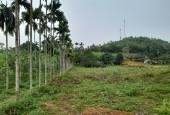 Bán đất Lương Sơn dt 16000m2 có 3000m ONT còn lại là đất vườn ,phù hợp làm nghỉ dưỡng