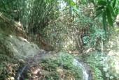 Bán 19000 đất rừng sx tại lương sơn