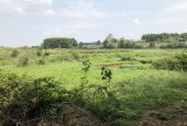 Bán mảnh đất 1400m  có 300 otn , gần hồ đồng chanh, Nhuận Trạch, Lương Sơn
