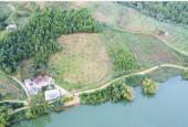 Bán 8.300m2 đất sát hồ làm homestay, nghỉ dưỡng giá chỉ 1.4tr/m2