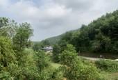 Bán đất rừng sản xuất Kim Bôi Hoà Bình DT 17930m2