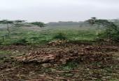 Bán đất Lương Sơn Hoà Bình 2700m đất bằng phẳng