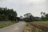 Bán đất nhuận Trạch 3014m có 200m ont