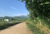 Cơ hội sở hữu lô đất Nghỉ dưỡng 1373m2 view toàn cảnh Công Viên di sản các nhà khoa học Việt Nam tại Cao Phong - Hoà Bình Giá chỉ 800 triệu