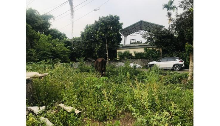 Chủ Gửi Bán 1294m2 Có 400ont Tại Nhuận Trạch Lương Sơn Giá Chính Chủ