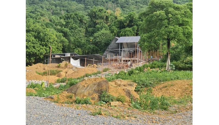 Bán Nhanh 4131m Toàn Bộ Đất Vườn Tại Suối Rè Cư Yên Lương Sơn Giá Đầu Tư