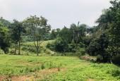 Bán 5500m2 Có 400ont Tại Cao Sơn Lương Sơn Hoà Bình Bám Suối Lớn