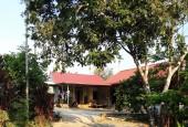Bán đất hợp hòa Lương Sơn 3400m2 bám đường liên xã 2 xe tránh nhau 40m, có nhà,vườn cây,tường bao giá hơn tr/m.