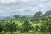 Bán đất lương Sơn dt 32000m có 200m ont