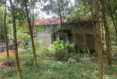 Bán đất lương Sơn dt 2257m có 50 m ont